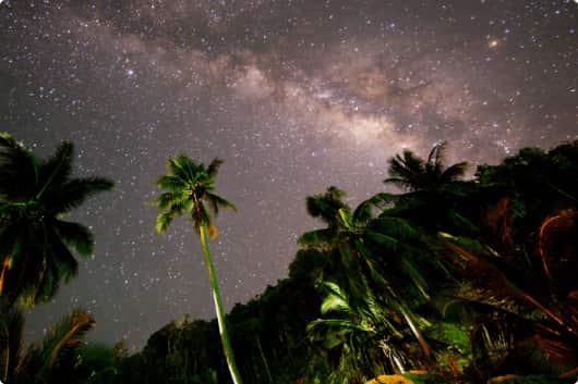 Романтическая ночь в Ангтонг