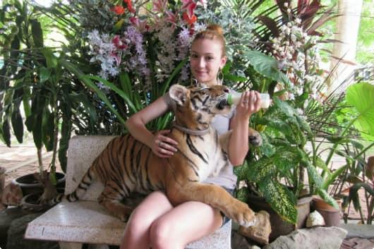 Аквариум и тигровый зоопарк
